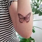tattoo-by-L-marie-studio-evolve00006