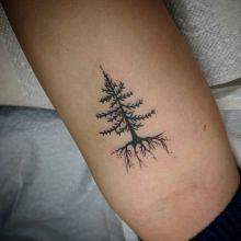 tattoo-by-nikki-canady-studio-evolve00007